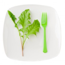 Veggie nutrition plan to lose weight