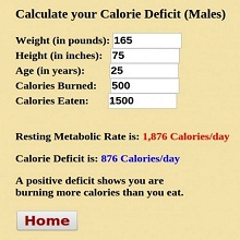 calorie deficit calculator 9