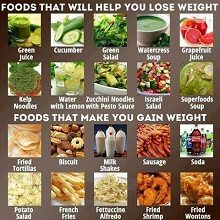 Foods That Will Help You Lose Weight Naturally And Fast