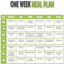 free nutrition plan 9