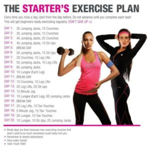workout routine to lose weight 8