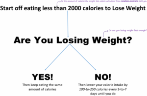 daily calorie intake to lose weight 56