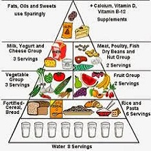 what is the best diet plan 9