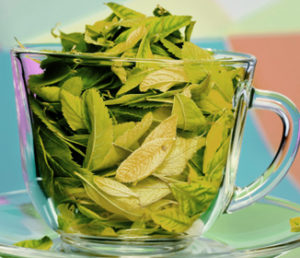 Green tea is a fantastic weight loss drink!