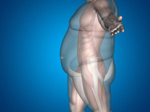 How to lose fat at fantastic speed?